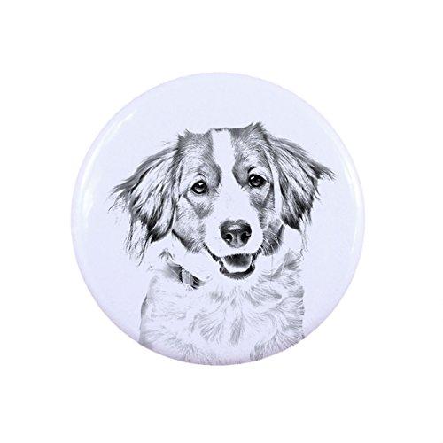 Kooikerhondje, Einen Knopf, Abzeichen mit einem Hund (Kooikerhondje Hunde)