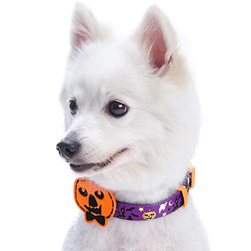 (Blueberry Pet Halloween Finsterniss Verlassenes Schloß Designer Hundehalsband mit Deko, Hals 37cm-50cm, M, Festtags-Halsbänder für Hunde)