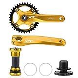 Dilwe Fahrrad Kurbel Set, Leichtes Fahrrad Single Speed Kurbel Set, 2 Kurbelarme und Innenlager für Mountainbike Rennräder(Gold)