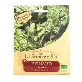 Graines Bio - Epinard America 355 gn - La Semence Bio