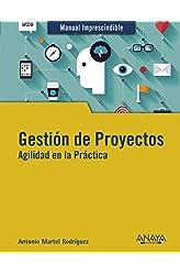 Descargar gratis Gestión de Proyectos. Agilidad en la Práctica en .epub, .pdf o .mobi