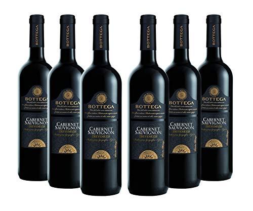 Bottega Cabernet Sauvignon Igt Trevenezie - 6 Bottiglie da 750 ml