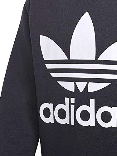 adidas Jungen Crew Sweatshirt, Schwarz/weiß, Gr. 164