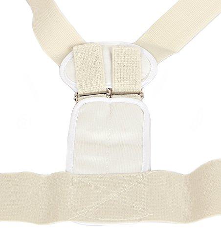 DealMagik Cinturón corrector postural de magnetoterapia (medio)