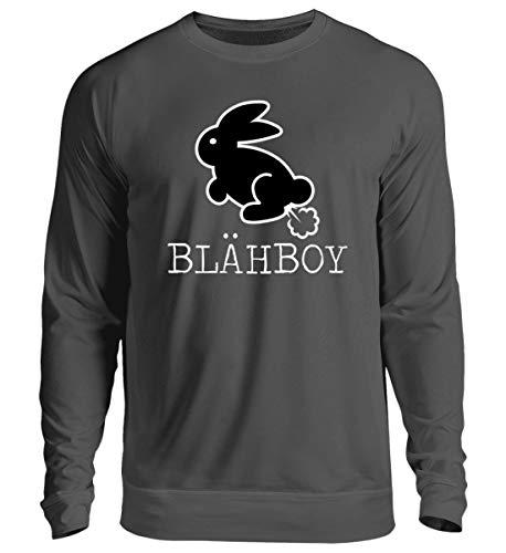 · Boarisch · bayrisch · Shirt · lustig · Spruch · Pulli · Jacke · Hoodie · T-Shirt · Geschenk - Unisex Pullover ()