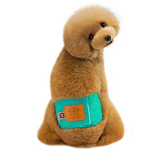 Milya Rüdenwindel Rüdenbinde Schutzhose für Rüden, Männliche Hund Welpen Bauchband, Atmungsaktiv aus Baumwollstoff mit Klettverschluss (Blaugrün L)