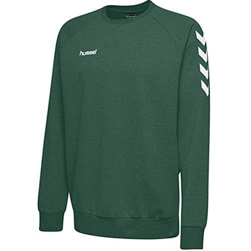 hummel Kinder Hmlgo Kids Cotton Sweatshirt, Grün (Evergreen), 128 Kind Kinder Sweatshirt