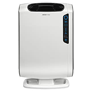 AeraMax 200 Air Purifier for Allergies and Odors with True HEPA Filter and 4-Stage Purification by Fellowes