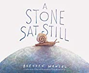 A Stone Sat Still: (Environmental and Nature Picture Book for Kids, Perspective Book for Preschool and Kinderg