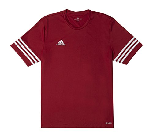 Adidas Herren Fußballhose Entrada 14 Shirt university red/white