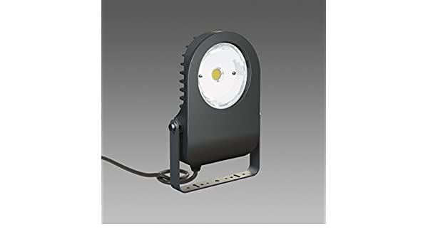 Plafoniere A Led Ip65 Disano : Disano cripto u projektor led lm cld cell silber amazon