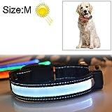 Haoweiwei Halsumfang Medium und Large Dog Pet Solar + USB-Lade-LED-Lichtkragen, Größe: M, 40-50 cm (Großauswahl : Hc4489w)