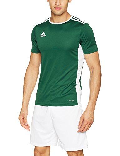 Adidas entrada 18, t-shirt uomo, verde (collegiate green/white), 3xl