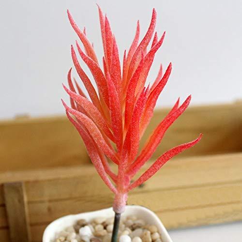 Simulación de plástico Suculentas miniatura plantas del jardín de Oficina Decoración Floral: Rojo - Le Jardin Floral