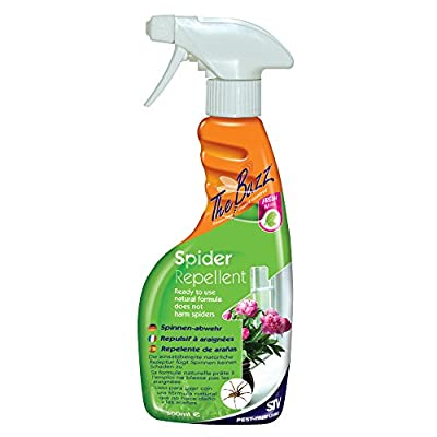 The Buzz Spider Repellent Spray (Humane, Natural Mint Treatment, Deters Spiders from the Home, Use Around Windows and Doors), 750 ml