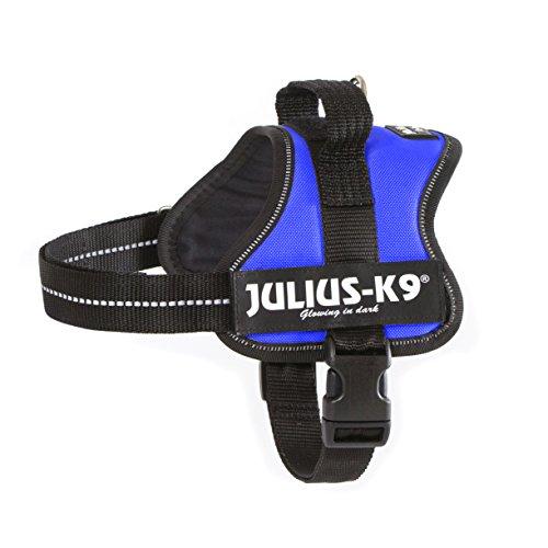Julius-K9Powerharness