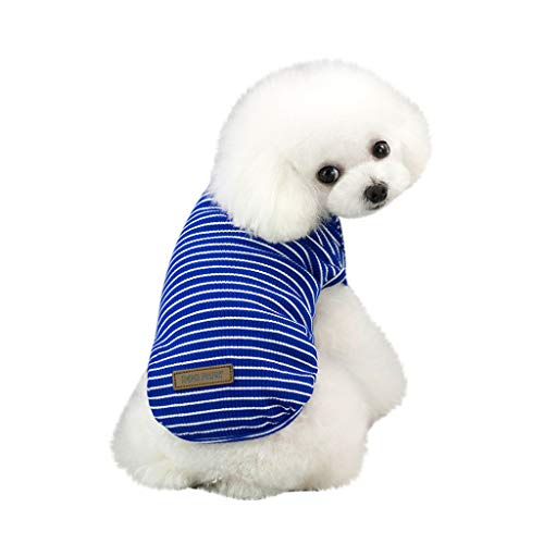 EUZeo Schön Haustierbekleidung für Kleiner Hund Kleine Katze Pet Frühling und Sommer Einfarbig Streifen Hund Shirt Kostüme Haustier Hund Kleidung Weste Kleidung für Hunde Katze -