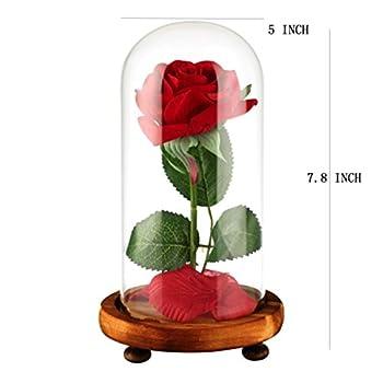 """Vollständiges """"Die Schöne Und Das Biest""""-set, Rote Seidenrose Und Led-licht Mit Herabgefallenen Blütenblättern In Glaskuppel Auf Einem Holzsockel Von Ysber Color Lamp Rose Shade 3"""