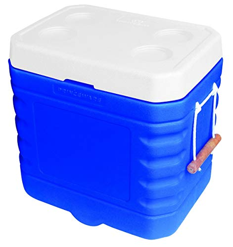 Princeware Plastic Ice Box, 110 Litre, Assorted