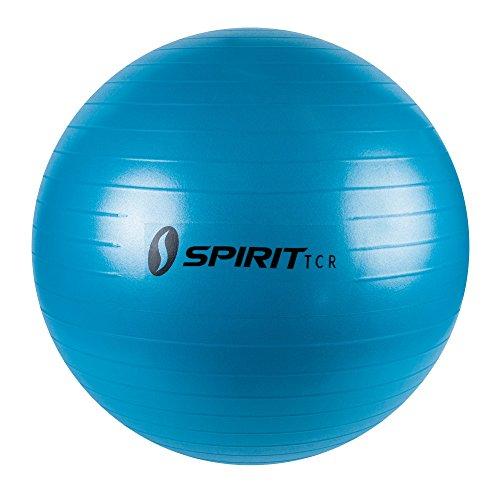 Spirit Gymnastikball Ø 55 Sitzball Fitnessball Yogaball Bürostuhl Ball + Pumpe Preisvergleich