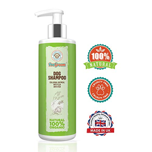 ProGroom Natural Oatmeal Dog Shampoo - Flea Shampoo Treatment and Itchy Skin Relief Formula - Grooming Puppy Sensitive Shampoo and Conditioner