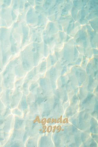 Agenda 2019: Semainier de janvier à décembre, Theme Lagon bleu, Design et ergonomique, Simple et efficace, Glossy cover, 15.2 x 22.9 cm, 116 pages