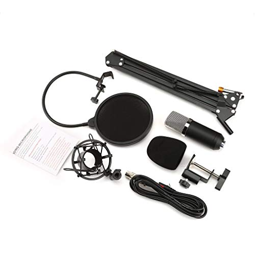 NW-700 Professional Studio Broadcasting Kondensatormikrofon-Kit mit Mikrofonstativ und Stoßdämpferhalterung -