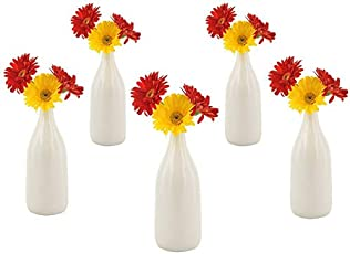 Vase: Buy Vases Online at Low Prices in India - Amazon.in on flowers in chernobyl, flowers in dubai uae, flowers in mumbai, flowers in pakistan, flowers in ooty, flowers in nairobi, flowers in pen,