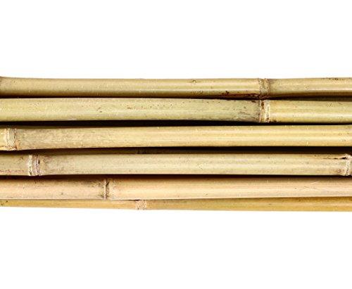 bambus-discount.com