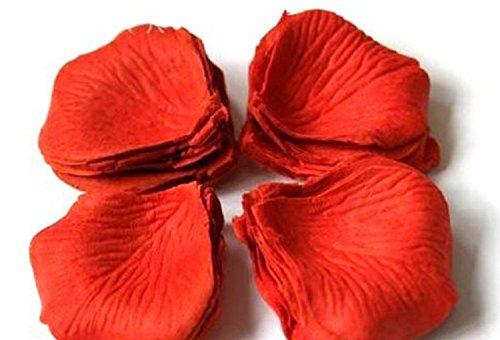 winrembrandt-100-petales-de-rose-en-soie-pour-mariage-party-couleur-rouge