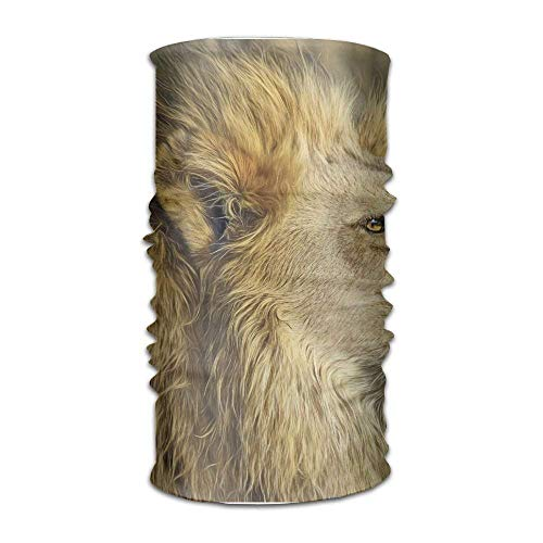 Wildlife Safari Lion Animal King Uhd Fashionable Outdoor Hundred Change Headscarf Original Multifunctional Headwear (Bed Head Edge)