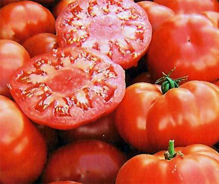 Bobby-Seeds Bio-Tomatensamen Marmande Portion