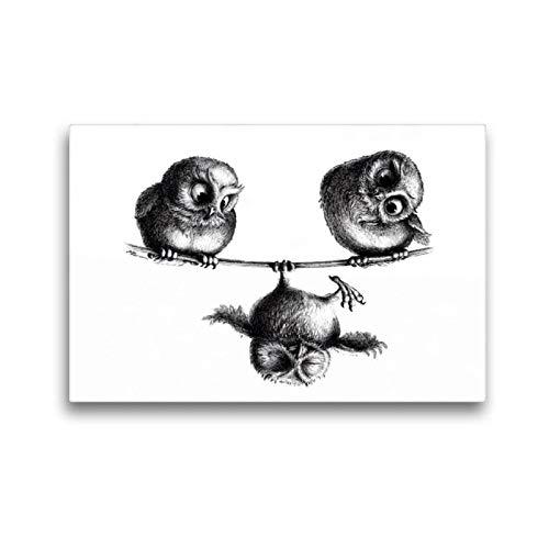 Premium Textil-Leinwand 45 x 30 cm Quer-Format Drei Eulen Freiheit und Spaß   Wandbild, HD-Bild auf Keilrahmen, Fertigbild auf hochwertigem Vlies, Leinwanddruck von Stefan Kahlhammer