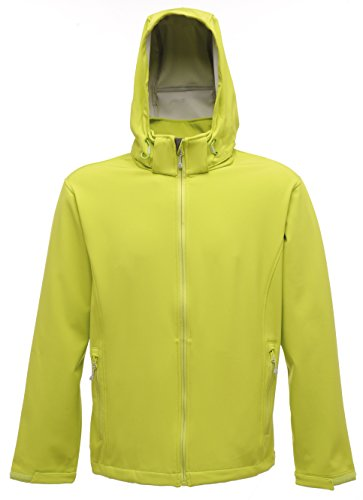 Arley softshell à capuche femmes Keylime / Light Steel