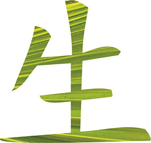 caracteres-chinos-life-pegatina-para-pared-60-x-58cm