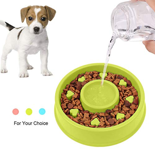 Aquarius Slow Feed Pet Bowl Improves Dog and Cat Digestion Less