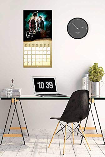 41q%2Bf5VBsNL - ERIK - Calendario de pared 2020 Harry Potter, 30 x 30 cm (incluye póster de regalo)