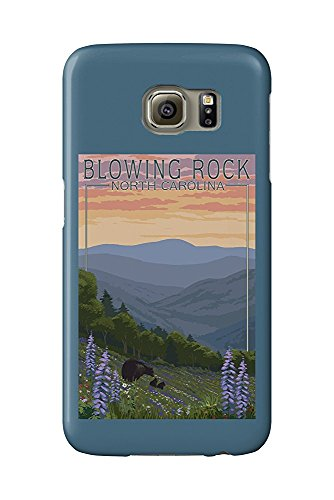 Blowing Rock, North Carolina - Spring Flowers and Bear Family (Galaxy S6 Cell Phone Case, Slim Barely There)