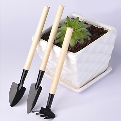 aowa 3Stück Pflanze Werkzeug Set Mini Garten-Bonsai Blumentopf Werkzeug Kleine Schaufel/Rechen/Spaten