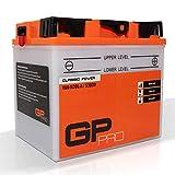 Batterie GP-Pro 'Classic Power' 12V 30Ah mit Säurepack 53030 / C60-N30L-A / Y60-N30L-A für Motorräder/Rasenmäher / Aufsitzmäher/Schneefräse Fahrzeugbatterie