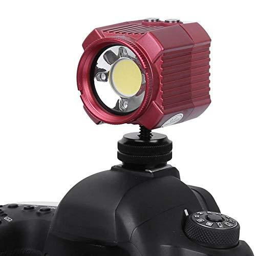 Mugast Diving Fill Lights, Protable Strong Resistance Lights 60m wasserdicht mit 2000LM 6500K LED Light und USB Charging für Verschiedene Szenen -