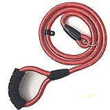 Nylon-Hundeleine, reflektierende Hundeleine nachts, mutige Verlängerung Hundeleine, Multi-color optional, dauerhafte Hundeleine (Farbe : Red, größe : L)