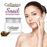 fengwen66 Snail Face Cream Anti Aging Moisturizer Dry Skin Face Repair Snail Face Cream White