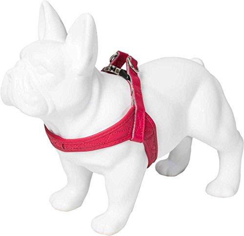 Karl Lagerfeld Haustier Kollektion für mittlere & kleine Hunde Premium Brustgeschirr Hundegeschirr, Farbe: Rot, Größe: M