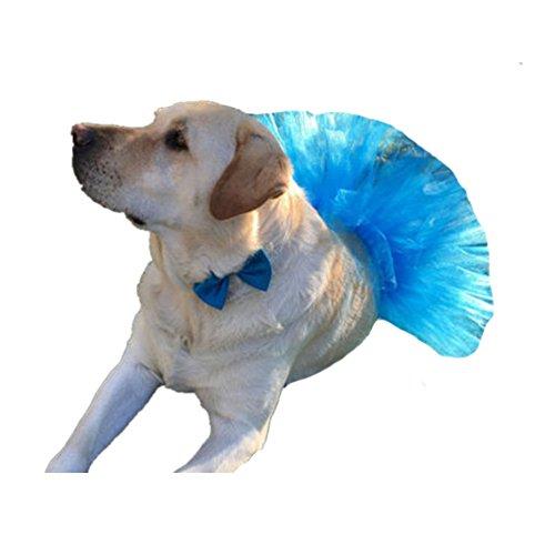 WangsCanis Haustier Hund Gaze Rock Tutu Halloween Party Kostüm Kleid Outfit Katze Prinzessin Kleiner Kleidung (Blau) (Halloween-kostüme Tutu Blau)