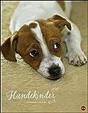 Hundekinder Posterkal 2020 34x44cm