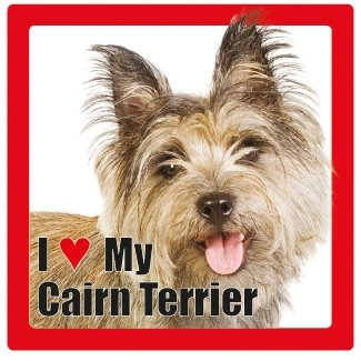 Cairn Terrier benannt Hund/Haustier Untersetzer von Sterling effectz -