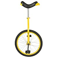 Fun 20 Inch Wheel Unicycle with Alloy Rim, Yellow