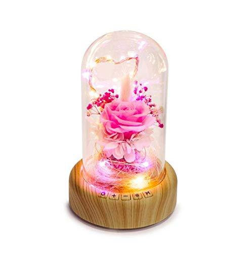 CE-LXYYD TW-S001 Wunsch Streamer Bluetooth Audio-Licht, Mikro-Landschaft ewige Blume Lautsprecher für Valentinstag Geburtstag Freundinnen Geschenk,Pinkbeauty
