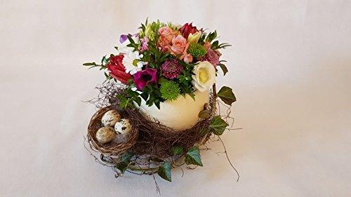 Osternest - Straußenei mit Frühlingsblumen und Vogelnest
